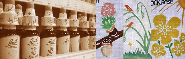 「フラワーエッセンスの植物たち with コトリ工房」案内画像
